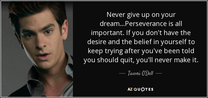 Never give up on your dream...Perseverance is all important. If you don't have the desire and the belief in yourself to keep trying after you've been told you should quit, you'll never make it. - Tawni O'Dell