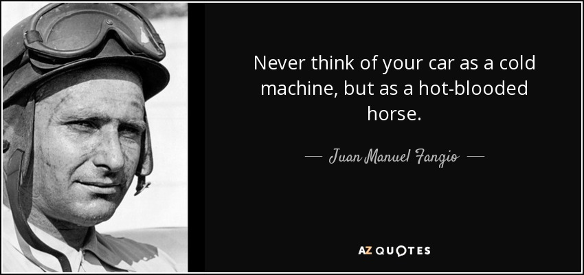 Never think of your car as a cold machine, but as a hot-blooded horse. - Juan Manuel Fangio