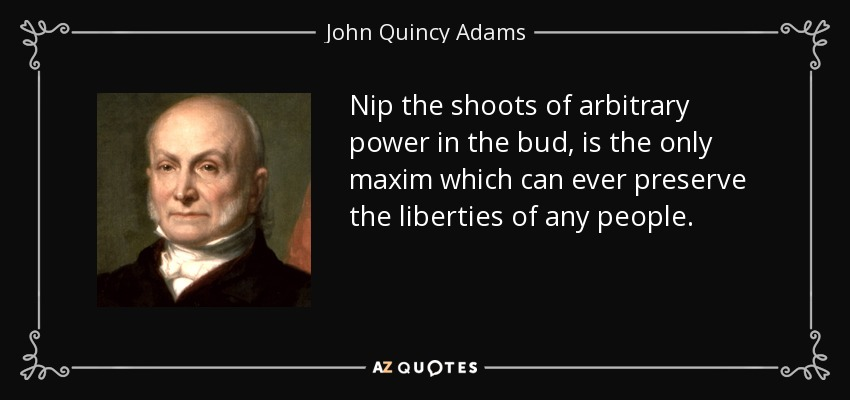 Nip the shoots of arbitrary power in the bud, is the only maxim which can ever preserve the liberties of any people. - John Quincy Adams