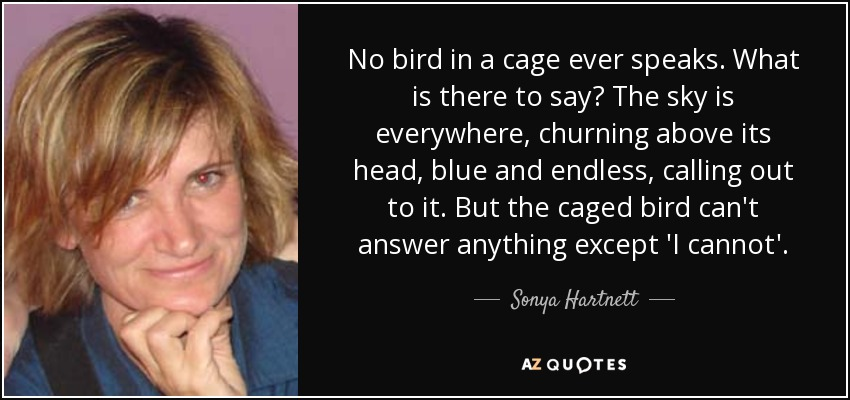 No bird in a cage ever speaks. What is there to say? The sky is everywhere, churning above its head, blue and endless, calling out to it. But the caged bird can't answer anything except 'I cannot'. - Sonya Hartnett