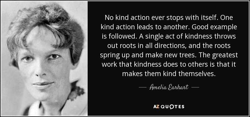 No kind action ever stops with itself. One kind action leads to another. Good example is followed. A single act of kindness throws out roots in all directions, and the roots spring up and make new trees. The greatest work that kindness does to others is that it makes them kind themselves. - Amelia Earhart