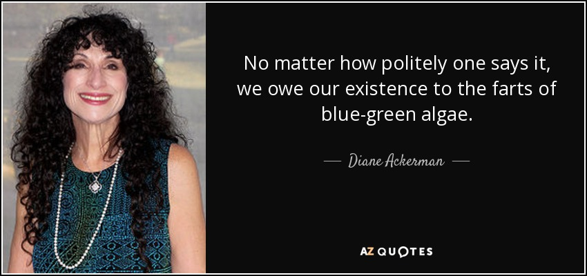 No matter how politely one says it, we owe our existence to the farts of blue-green algae. - Diane Ackerman