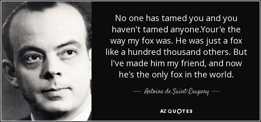 No one has tamed you and you haven't tamed anyone.Your'e the way my fox was. He was just a fox like a hundred thousand others. But I've made him my friend, and now he's the only fox in the world. - Antoine de Saint-Exupery