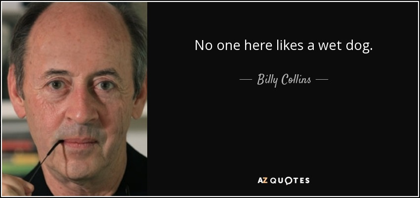 No one here likes a wet dog. - Billy Collins