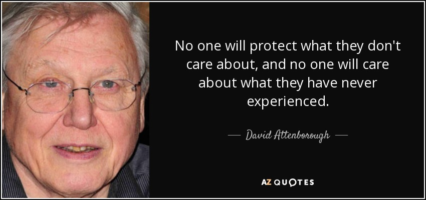 No one will protect what they don't care about, and no one will care about what they have never experienced. - David Attenborough