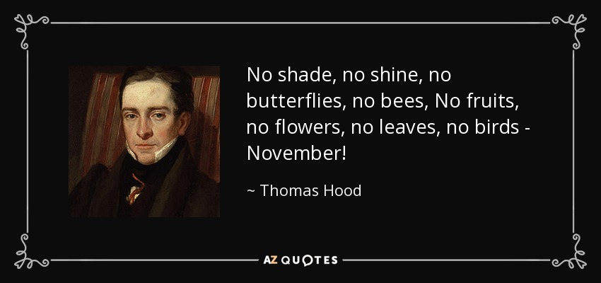 No shade, no shine, no butterflies, no bees, No fruits, no flowers, no leaves, no birds - November! - Thomas Hood