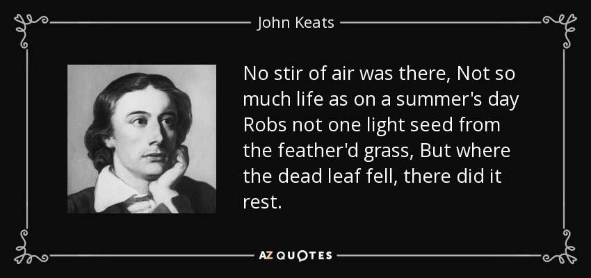 No stir of air was there, Not so much life as on a summer's day Robs not one light seed from the feather'd grass, But where the dead leaf fell, there did it rest. - John Keats