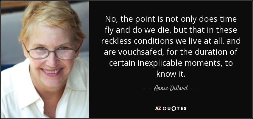 No, the point is not only does time fly and do we die, but that in these reckless conditions we live at all, and are vouchsafed, for the duration of certain inexplicable moments, to know it. - Annie Dillard