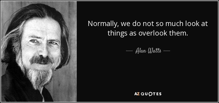 Normally, we do not so much look at things as overlook them. - Alan Watts