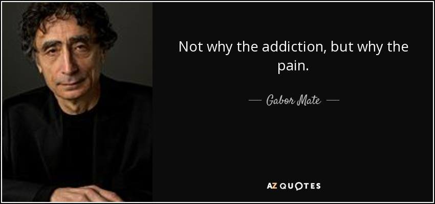 Not why the addiction, but why the pain. - Gabor Mate