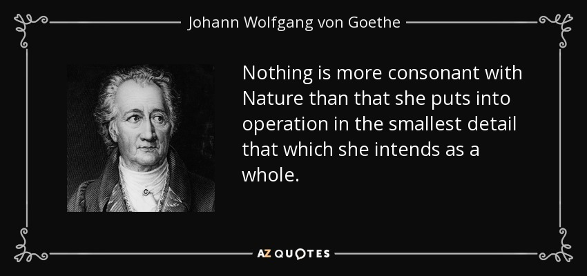 Nothing is more consonant with Nature than that she puts into operation in the smallest detail that which she intends as a whole. - Johann Wolfgang von Goethe