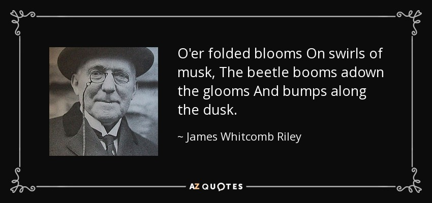 O'er folded blooms On swirls of musk, The beetle booms adown the glooms And bumps along the dusk. - James Whitcomb Riley