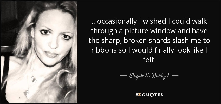 ...occasionally I wished I could walk through a picture window and have the sharp, broken shards slash me to ribbons so I would finally look like I felt. - Elizabeth Wurtzel