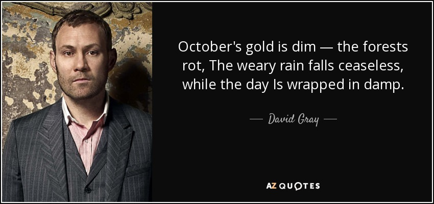David Gray Quote Octobers Gold Is Dim The Forests Rot The Weary