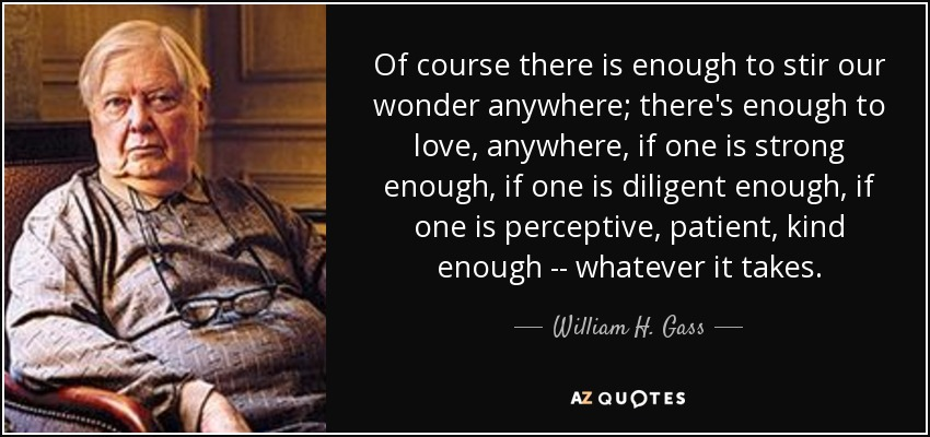 Of course there is enough to stir our wonder anywhere; there's enough to love, anywhere, if one is strong enough, if one is diligent enough, if one is perceptive, patient, kind enough -- whatever it takes. - William H. Gass