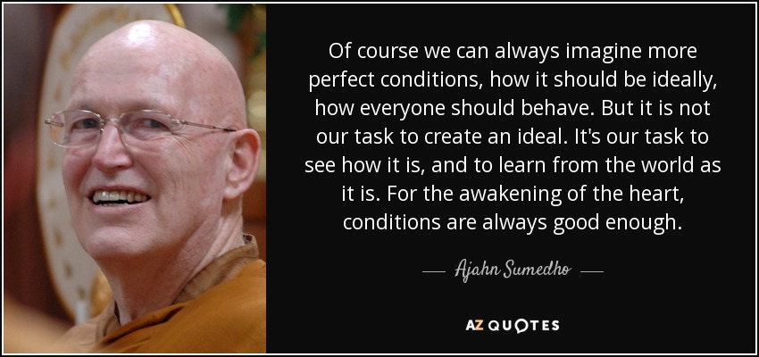 Of course we can always imagine more perfect conditions, how it should be ideally, how everyone should behave. But it is not our task to create an ideal. It's our task to see how it is, and to learn from the world as it is. For the awakening of the heart, conditions are always good enough. - Ajahn Sumedho