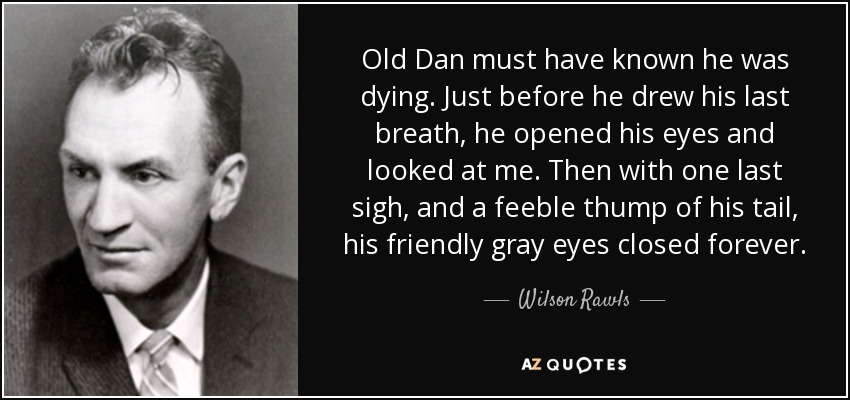 Old Dan must have known he was dying. Just before he drew his last breath, he opened his eyes and looked at me. Then with one last sigh, and a feeble thump of his tail, his friendly gray eyes closed forever. - Wilson Rawls