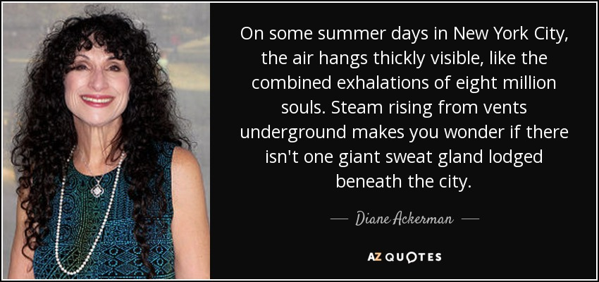 On some summer days in New York City, the air hangs thickly visible, like the combined exhalations of eight million souls. Steam rising from vents underground makes you wonder if there isn't one giant sweat gland lodged beneath the city. - Diane Ackerman