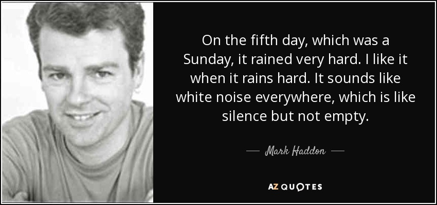 On the fifth day, which was a Sunday, it rained very hard. I like it when it rains hard. It sounds like white noise everywhere, which is like silence but not empty. - Mark Haddon