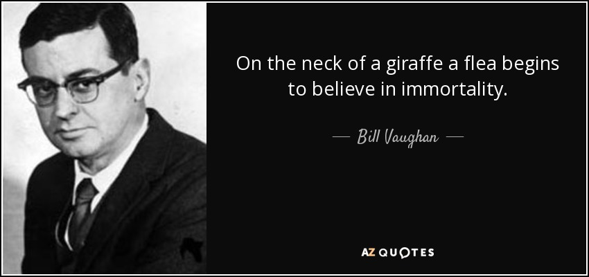 On the neck of a giraffe a flea begins to believe in immortality. - Bill Vaughan