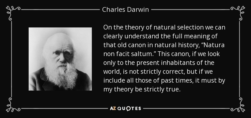 "On the theory of natural selection we can clearly understand the full meaning of that old canon in natural history, ""Natura non facit saltum."" This canon, if we look only to the present inhabitants of the world, is not strictly correct, but if we include all those of past times, it must by my theory be strictly true. - Charles Darwin"