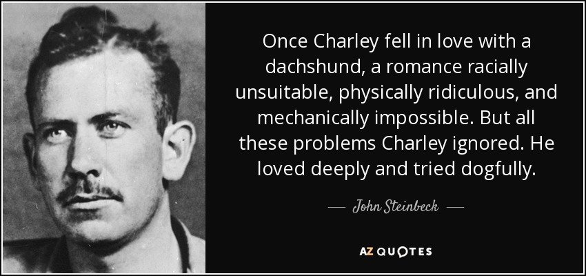 Once Charley fell in love with a dachshund, a romance racially unsuitable, physically ridiculous, and mechanically impossible. But all these problems Charley ignored. He loved deeply and tried dogfully. - John Steinbeck