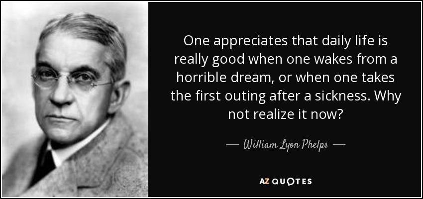 One appreciates that daily life is really good when one wakes from a horrible dream, or when one takes the first outing after a sickness. Why not realize it now? - William Lyon Phelps