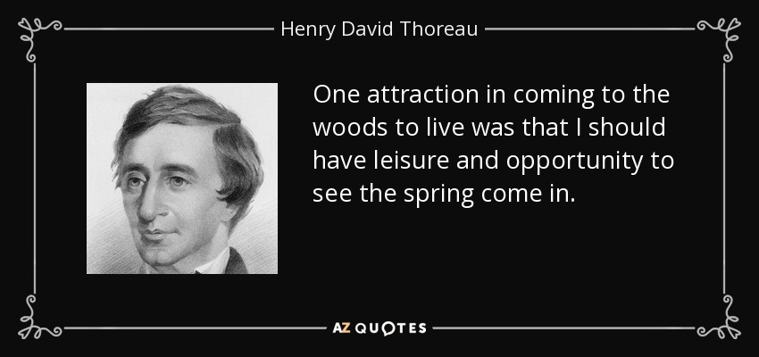 One attraction in coming to the woods to live was that I should have leisure and opportunity to see the spring come in. - Henry David Thoreau