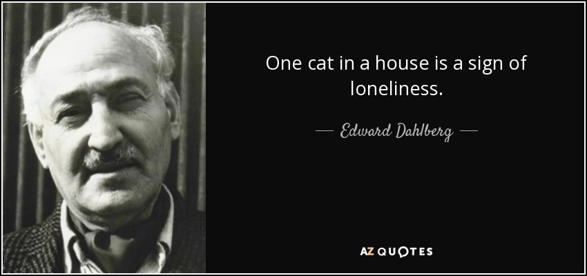 One cat in a house is a sign of loneliness. - Edward Dahlberg