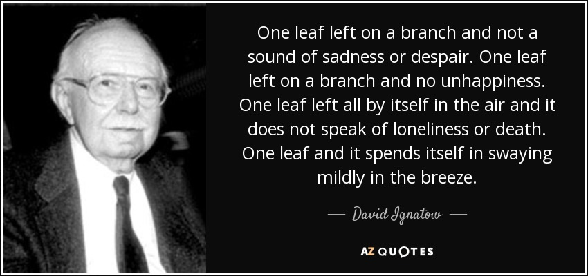 One leaf left on a branch and not a sound of sadness or despair. One leaf left on a branch and no unhappiness. One leaf left all by itself in the air and it does not speak of loneliness or death. One leaf and it spends itself in swaying mildly in the breeze. - David Ignatow