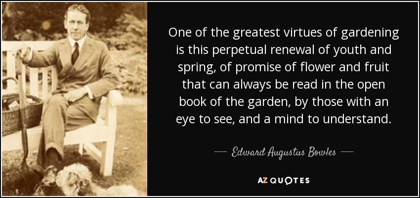 One of the greatest virtues of gardening is this perpetual renewal of youth and spring, of promise of flower and fruit that can always be read in the open book of the garden, by those with an eye to see, and a mind to understand. - Edward Augustus Bowles
