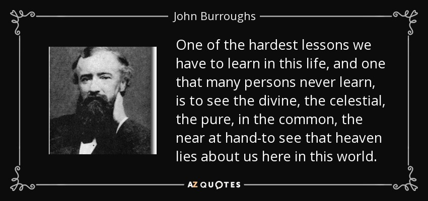 One of the hardest lessons we have to learn in this life, and one that many persons never learn, is to see the divine, the celestial, the pure, in the common, the near at hand-to see that heaven lies about us here in this world. - John Burroughs