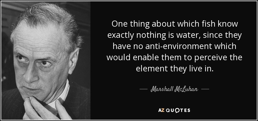 One thing about which fish know exactly nothing is water, since they have no anti-environment which would enable them to perceive the element they live in. - Marshall McLuhan