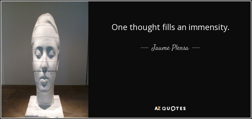 One thought fills an immensity. - Jaume Plensa