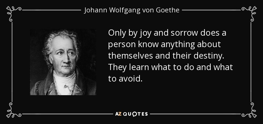 Only by joy and sorrow does a person know anything about themselves and their destiny. They learn what to do and what to avoid. - Johann Wolfgang von Goethe