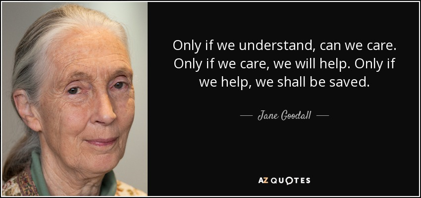 Only if we understand, can we care. Only if we care, we will help. Only if we help, we shall be saved. - Jane Goodall