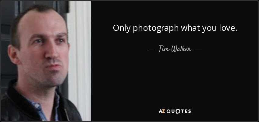 Only photograph what you love. - Tim Walker