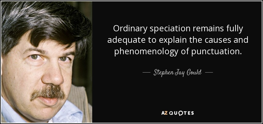 Ordinary speciation remains fully adequate to explain the causes and phenomenology of punctuation. - Stephen Jay Gould
