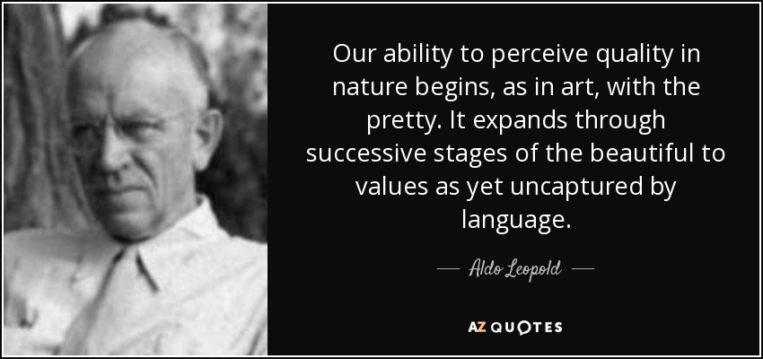 Our ability to perceive quality in nature begins, as in art, with the pretty. It expands through successive stages of the beautiful to values as yet uncaptured by language. - Aldo Leopold