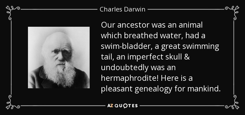 Our ancestor was an animal which breathed water, had a swim-bladder, a great swimming tail, an imperfect skull & undoubtedly was an hermaphrodite! Here is a pleasant genealogy for mankind. - Charles Darwin