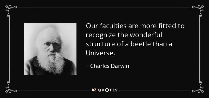 Our faculties are more fitted to recognize the wonderful structure of a beetle than a Universe. - Charles Darwin