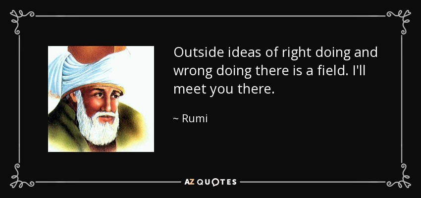 Outside ideas of right doing and wrong doing there is a field. I'll meet you there. - Rumi