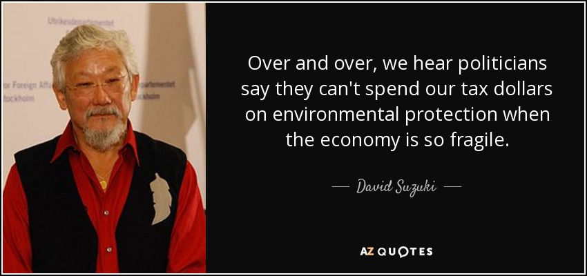 Over and over, we hear politicians say they can't spend our tax dollars on environmental protection when the economy is so fragile. - David Suzuki