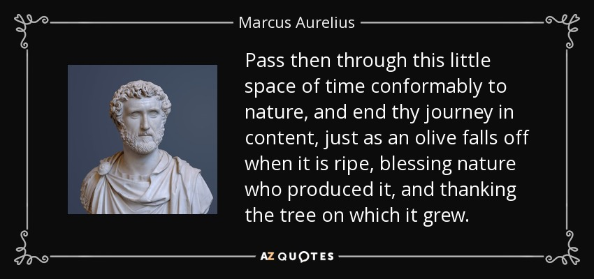 Pass then through this little space of time conformably to nature, and end thy journey in content, just as an olive falls off when it is ripe, blessing nature who produced it, and thanking the tree on which it grew. - Marcus Aurelius