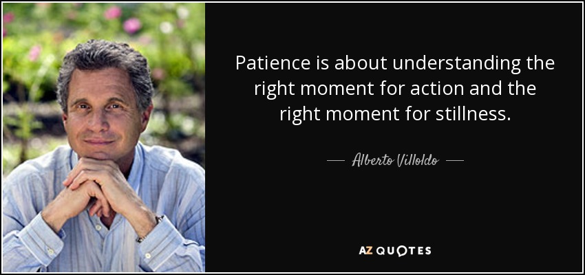 Patience is about understanding the right moment for action and the right moment for stillness. - Alberto Villoldo