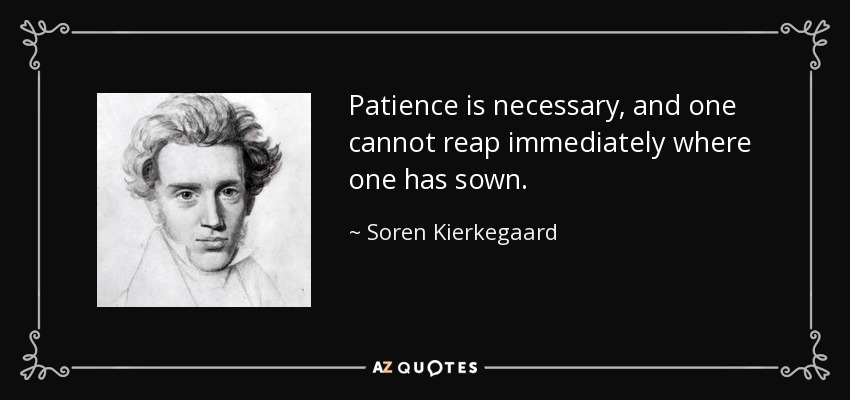 Patience is necessary, and one cannot reap immediately where one has sown. - Soren Kierkegaard