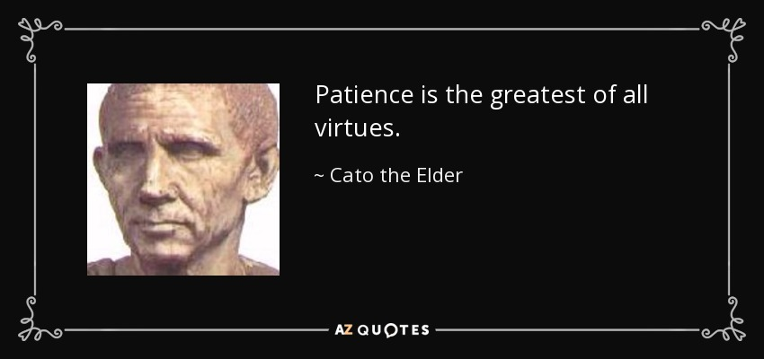 Patience is the greatest of all virtues. - Cato the Elder