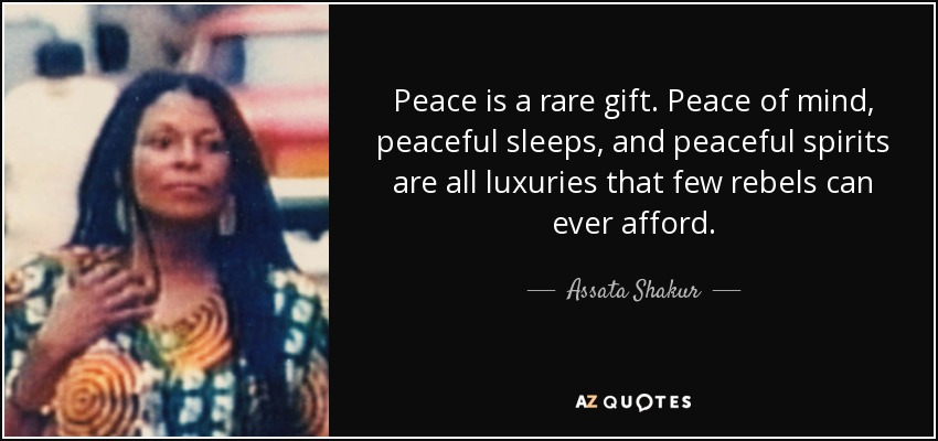 Peace is a rare gift. Peace of mind, peaceful sleeps, and peaceful spirits are all luxuries that few rebels can ever afford. - Assata Shakur