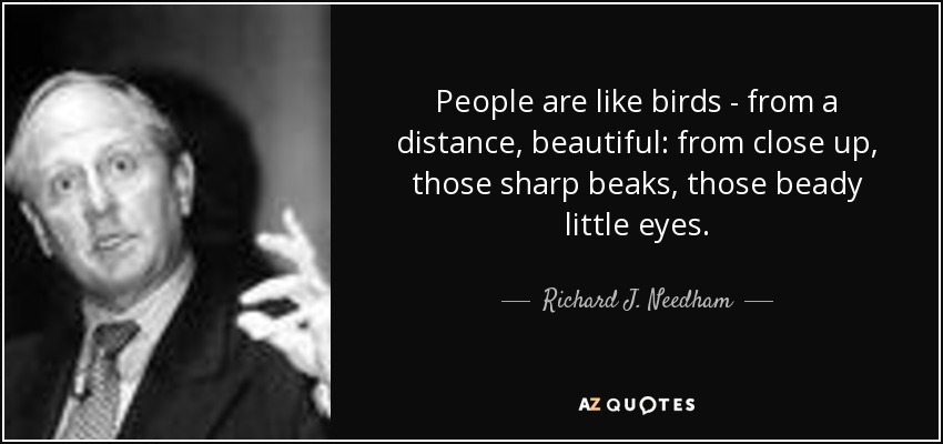 People are like birds - from a distance, beautiful: from close up, those sharp beaks, those beady little eyes. - Richard J. Needham