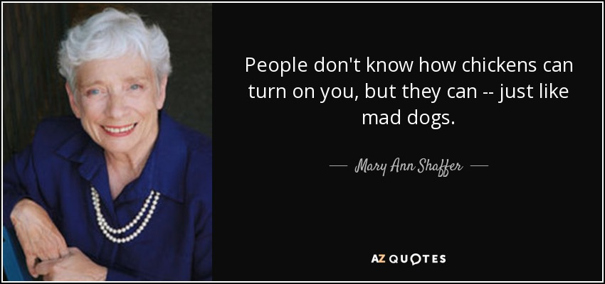 People don't know how chickens can turn on you, but they can -- just like mad dogs. - Mary Ann Shaffer